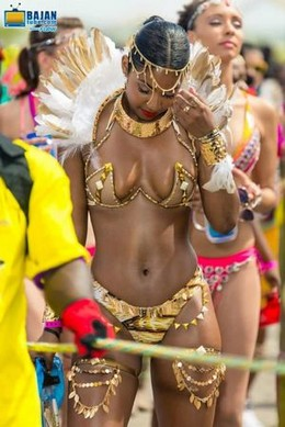 Caribbean Girl the carnival sex story